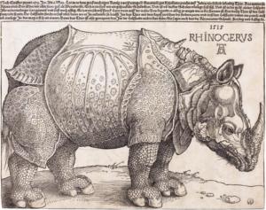 Albrecht Durer's rhinoceros illustration